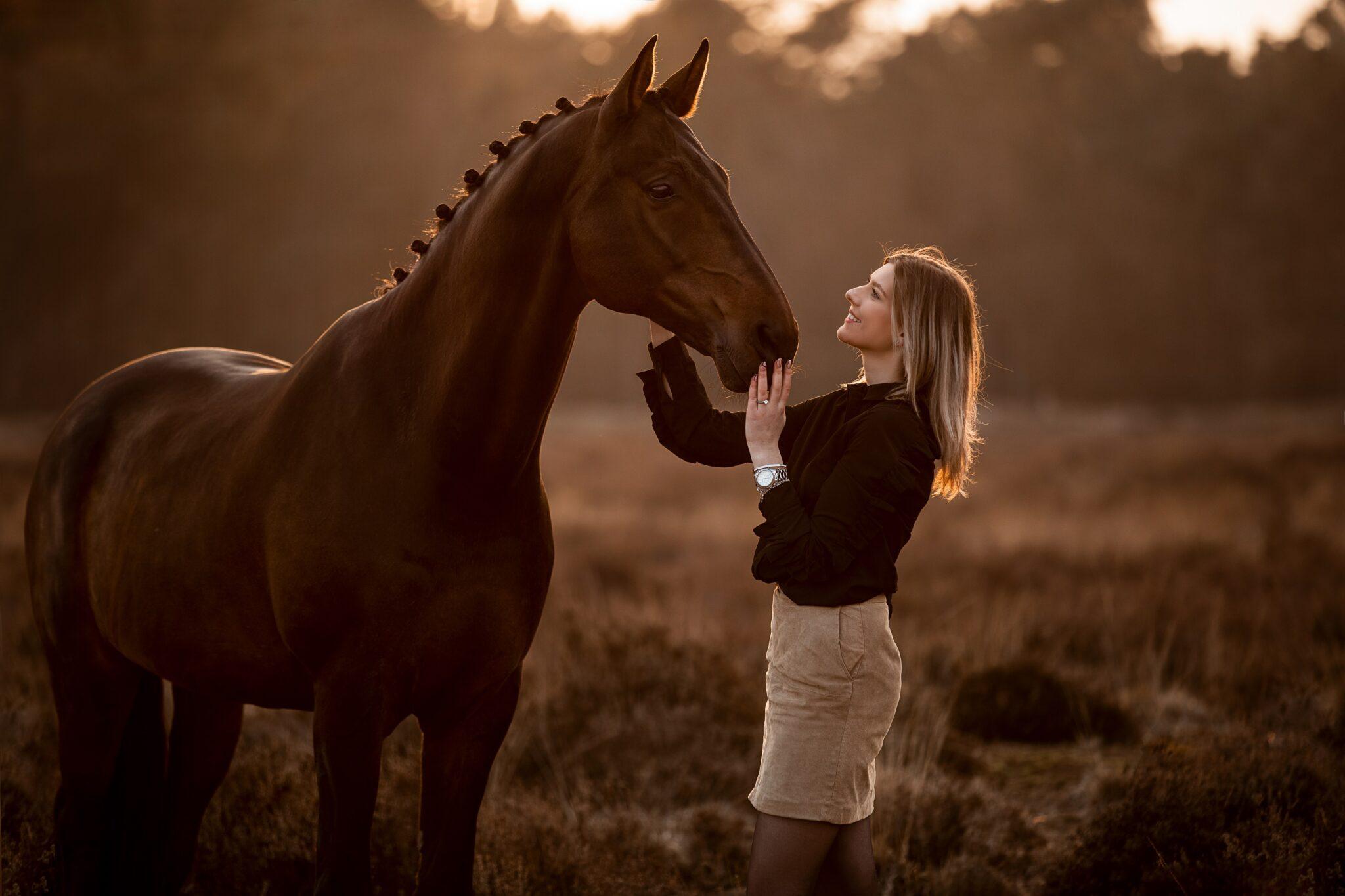 Paardenhouderij